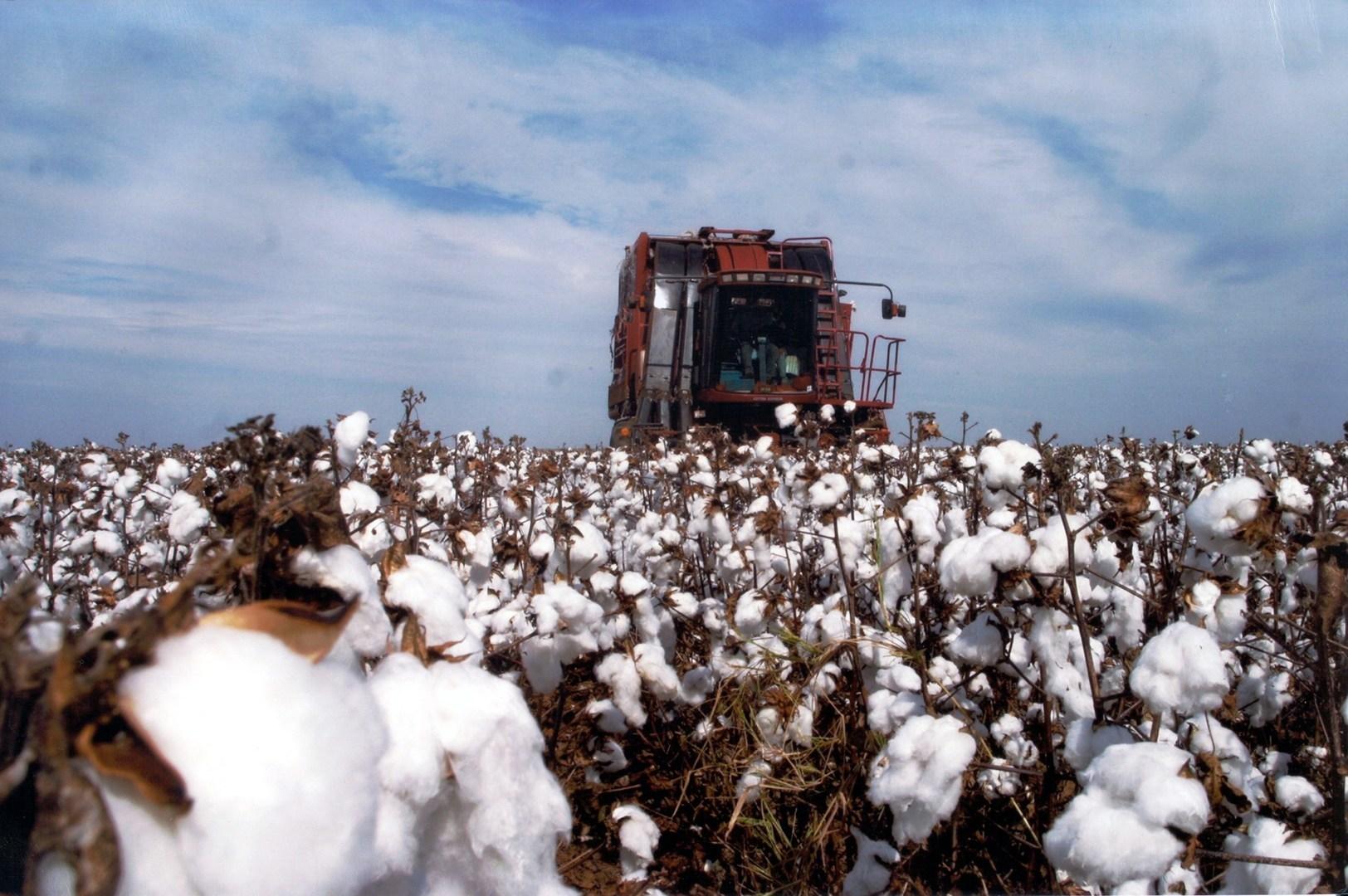 Ministério da Fazenda diz que medidas do governo levarão à recuperação econômica