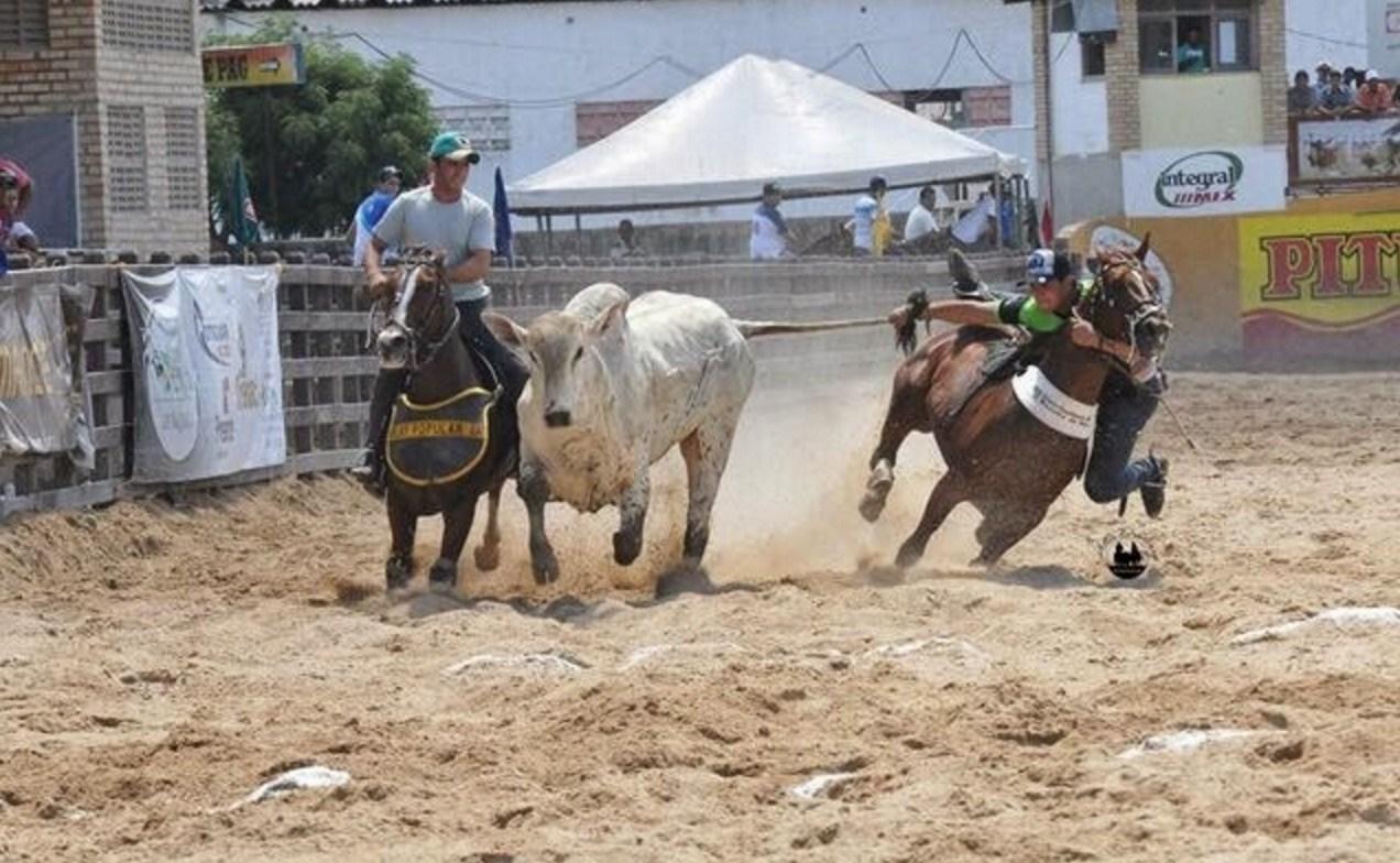 """Justiça proíbe vaquejada em Rondonópolis por """"maus-tratos e crueldade"""""""