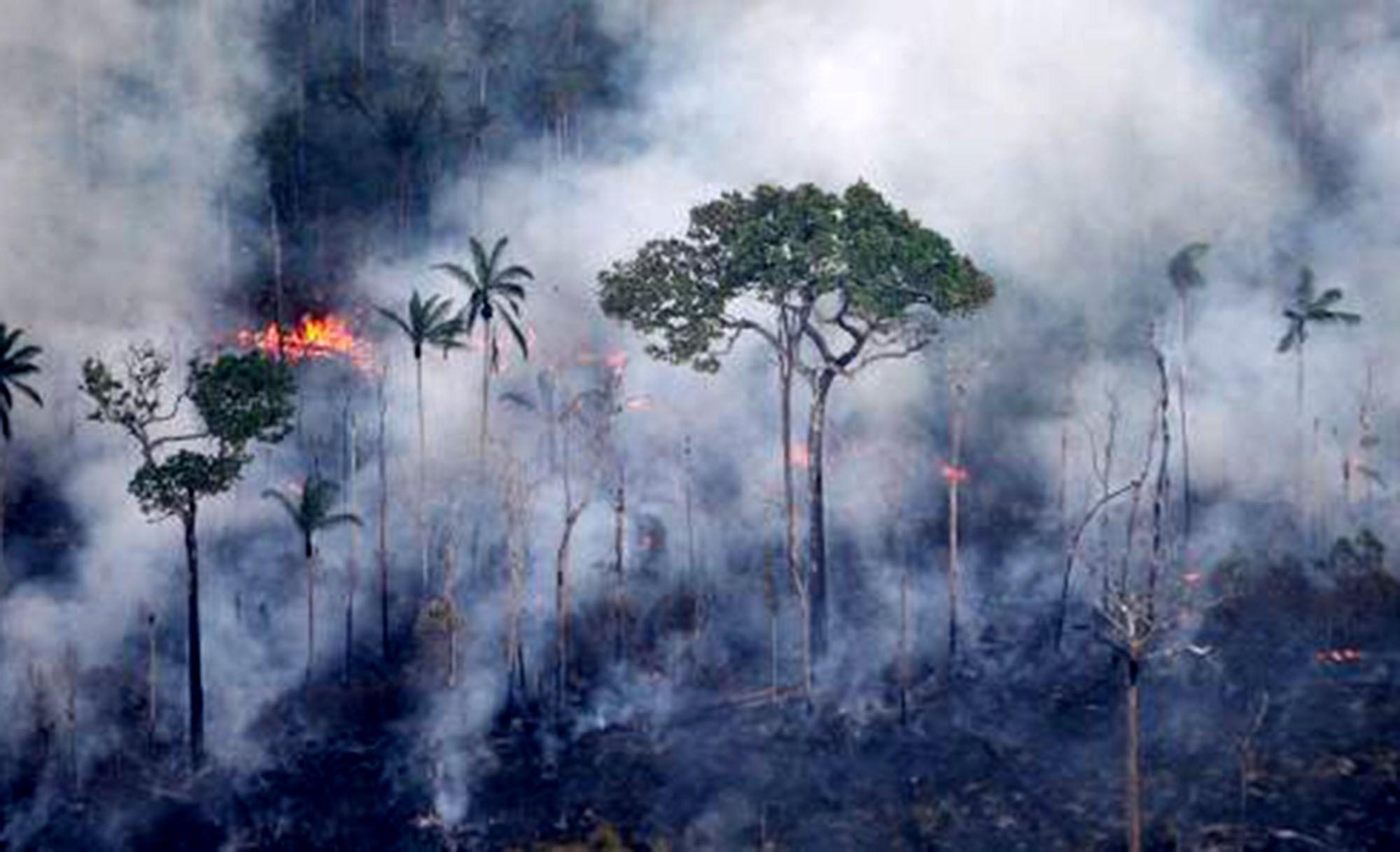 MPF investiga causas de incêndio que atingiu terra indígena em MT