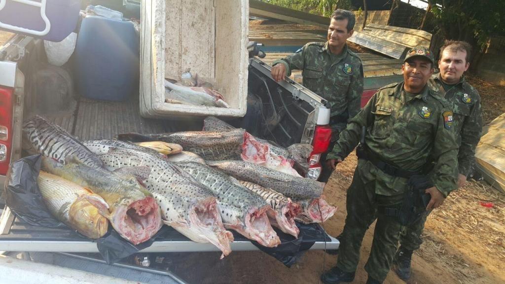 Polícia apreende mais de 200 quilos de pescado no Pantanal