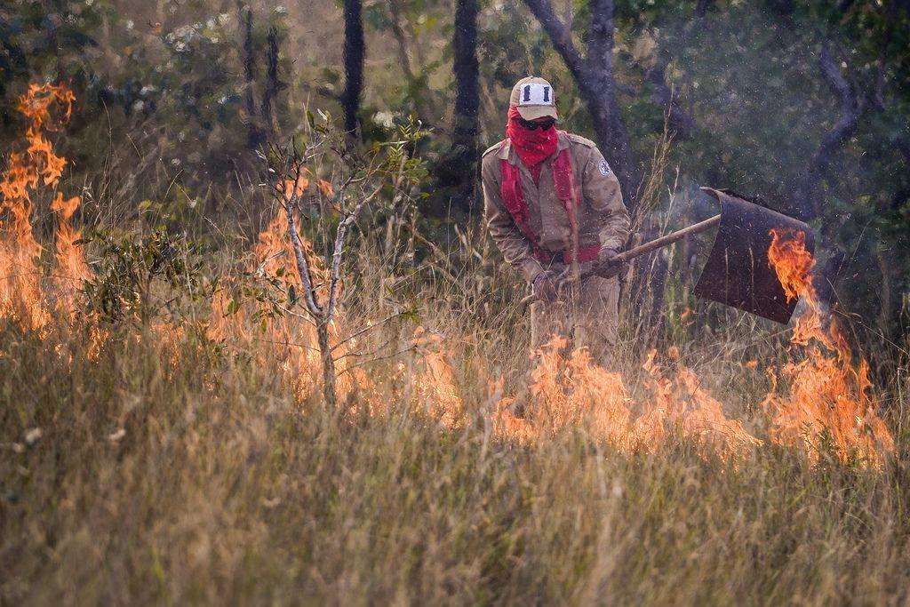 Proibição de queimadas termina em MT; estado de alerta continua